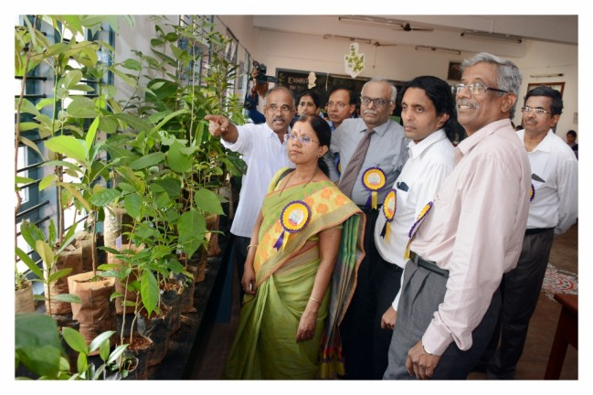 Exhibition on Medicinal plants